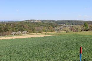 Nahe der Golf- und Thermengemeinde Stegersbach: Sonniges Baugrundstück mit Weitblick