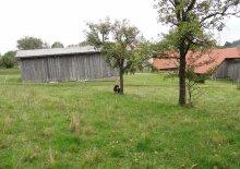Haus zum Wohnen im Waldviertel, Kottes in Dankholz kaufen