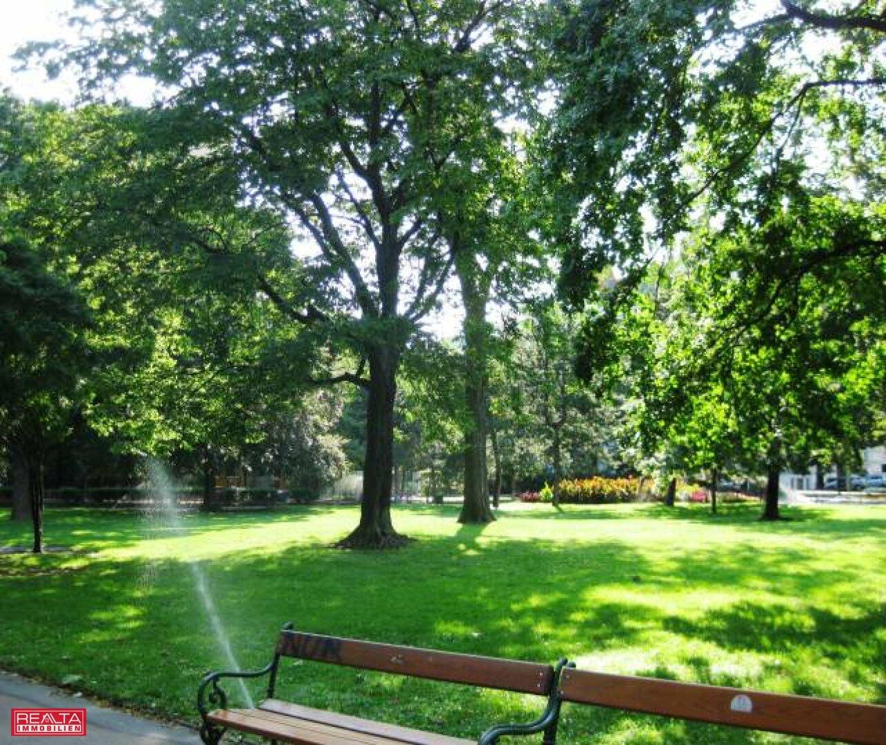 Der Arenbergpark in der Nähe der Wohnung