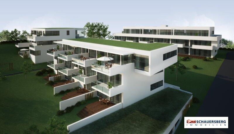 Schönes sonniges Penthouse mit 4 Zimmer, großzügiger Terrasse, in ruhiger Aussichtslage am Ruckerlberg