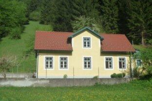 Top renoviertes idyllisches Landhaus im schönen Dirndltal!