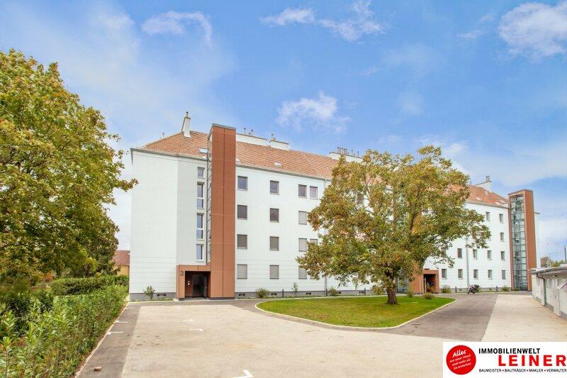 Schwechat - Rannersdorf:  ruhige, 2 Zimmer - 50 m² Mietwohnung mit bester Verkehrsanbindung! Objekt_10636