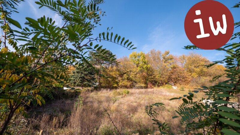 Wunderschönes Grundstück mit Baubewilligung für eine Familienvilla Objekt_650 Bild_70