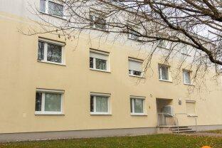 Traiskirchen -  Familienfreundliche 3 Zimmer Wohnung