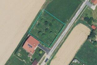 Nähe Oberwart: Baugrundstück in ruhiger Wohnlage - NEUER PREIS!