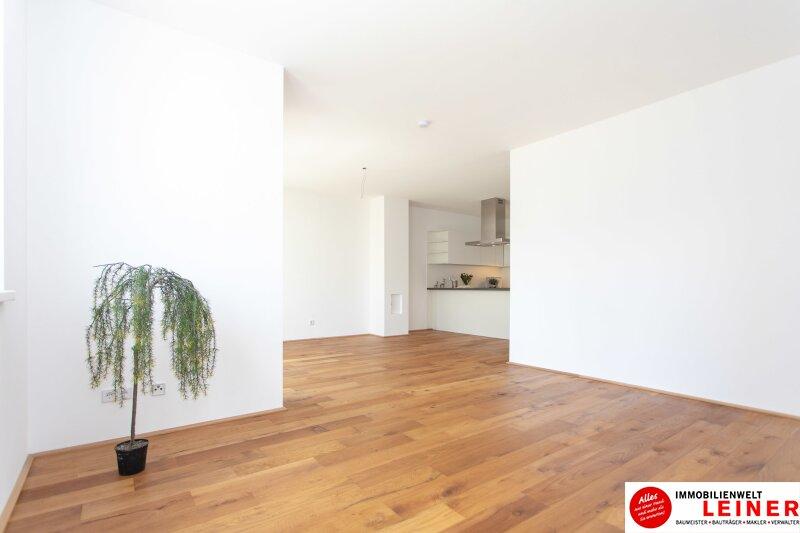 *UNBEFRISTET*Schwechat - 4 Zimmer Mietwohnung mit 140 m² großem Garten und Terrasse Objekt_9163 Bild_870
