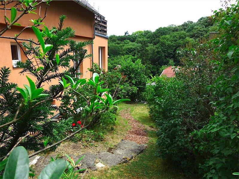 Grundstück mit Haus in herrlicher Grünruhelage, 730 m2,  modernisiertes Fachwerkhaus, Anbau oder zusätzlicher Bau möglich, Linie 43! /  / 1170Wien / Bild 8