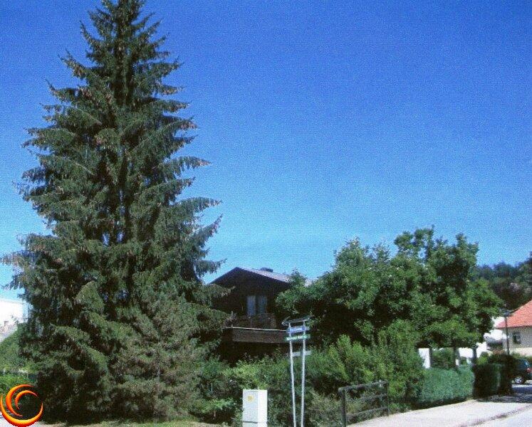 9201 ACHTUNG NEUER PREIS!   Wohnhaus in Krumpendorf am Wörthersee