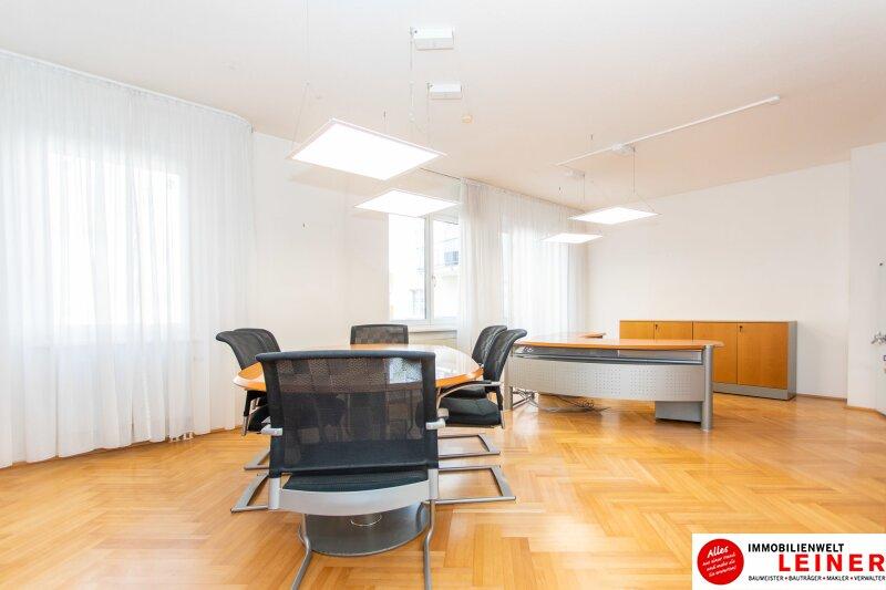 Modernes Büro im Zentrum von Schwechat Objekt_10043