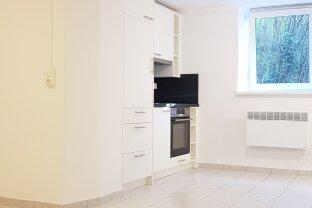 Single Apartment - Landhaus & Zentrumsnähe