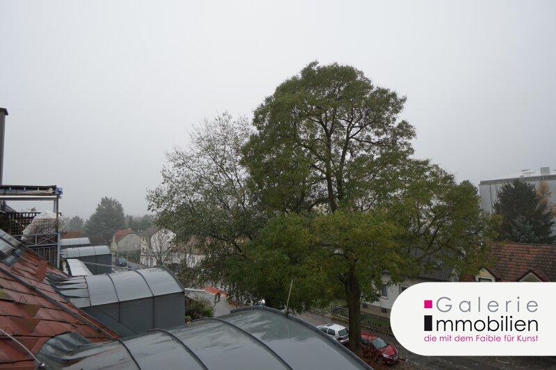 Blick auf Kahlenberg und Bisamberg - Terrassenwohnung im Neubau Objekt_29159 Bild_423
