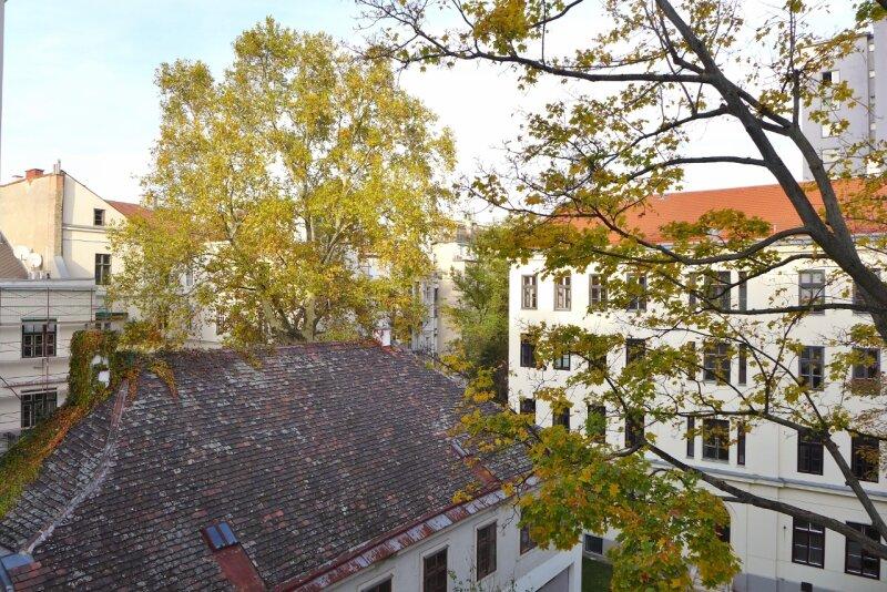 Ruhige Altbauwohnung mit Garten- und Saunamitbenützung /  / 1040Wien / Bild 8