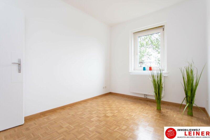 Schwechat: Saniertes Haus mit 2 getrennten Wohneinheiten zu mieten - auch für Praxis geeignet Objekt_10791 Bild_297