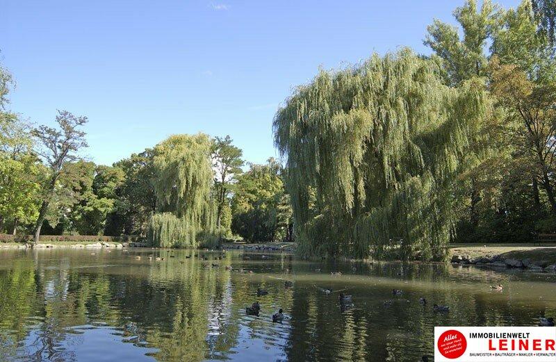 Schwechat – ruhige, sehr nette 2 Zimmer Mietwohnung direkt beim Stadtpark! Objekt_9957 Bild_87