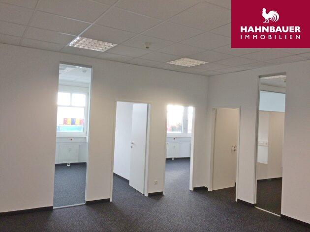 Büro 218 m2 südlich von Wien, in Wr. Neudorf zu mieten