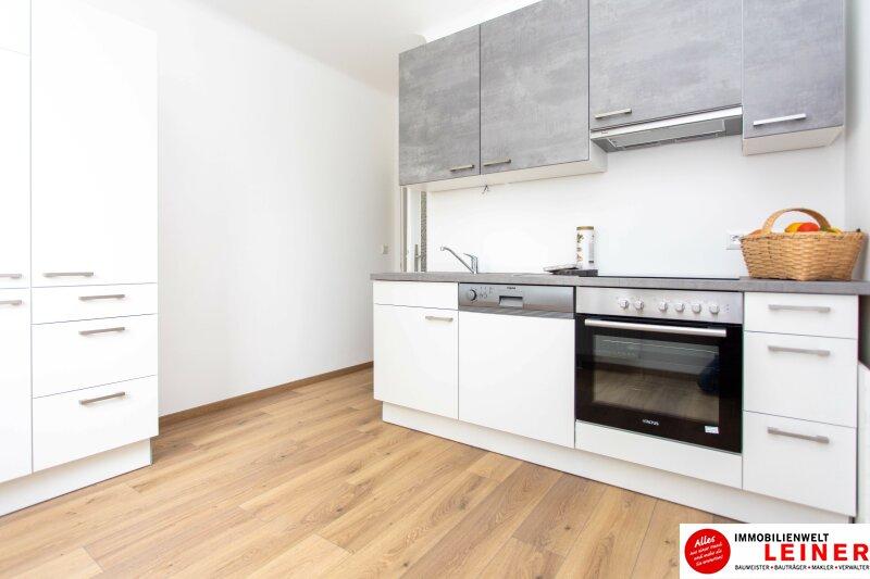 Schwechat: Saniertes Haus mit 2 getrennten Wohneinheiten zu mieten - auch für Praxis geeignet Objekt_10791 Bild_291