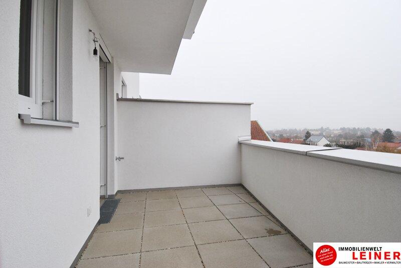 Schwechat - 57 m² Mietwohnung mit Terrasse im Zentrum - Erstbezug Objekt_9290 Bild_491