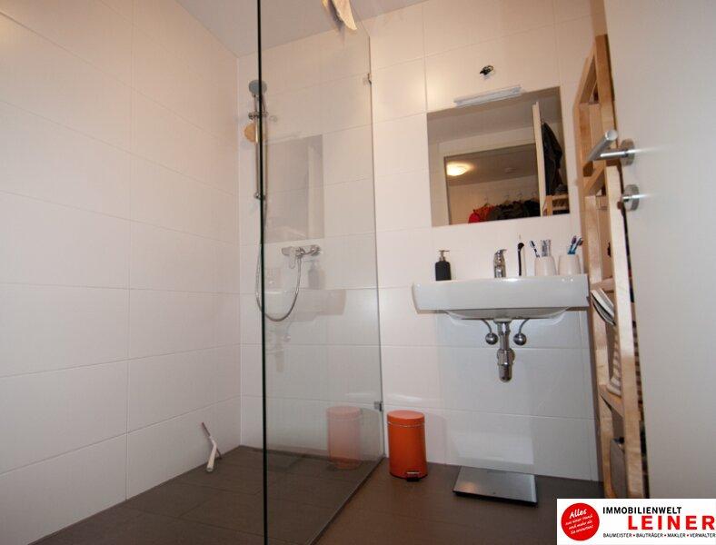 Großzügige Einzimmerwohnung mit Tiefgaragenplatz in Schwechat Objekt_9688 Bild_780