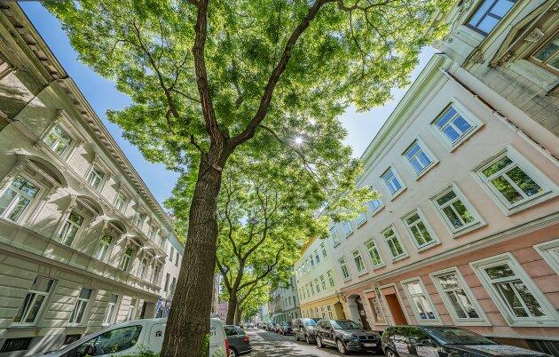Foto von NEU in Favoriten++Klein aber Mein ++Nähe U-Bahn U1 Reumannplatz++Wunderschöne Altbau-Wohnung in Wien Favoriten+++