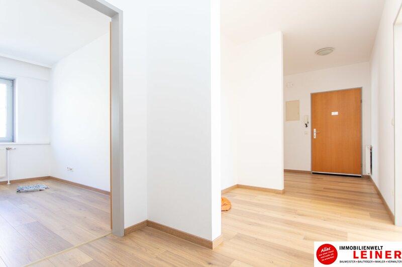 Ebergassing - 3 Zimmerwohnung im Zentrum Objekt_10433 Bild_530