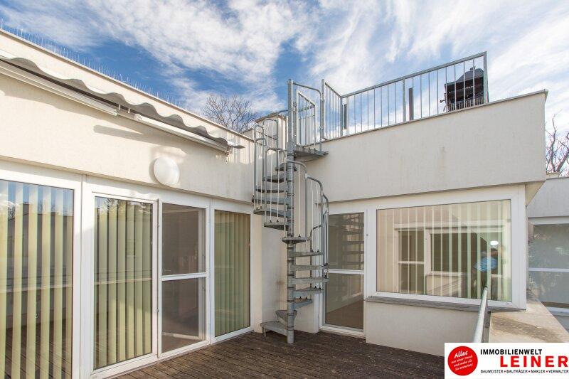 Schwechat - luxuriöses 4 Zimmer Penthouse 130m² Wohnfläche plus 2 Traumterrassen! Objekt_8876 Bild_450