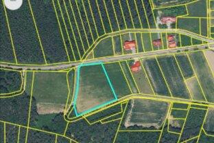 Baugrund Nähe Oberwart im Ausmass von 7.266 m² in Ortsrandlage