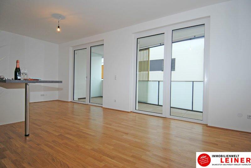 Schwechat - 2 Zimmer Mietwohnung im Erstbezug Objekt_3764 Bild_36