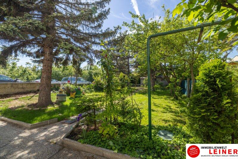 Einfamilienhaus in Schwechat 555m² EIGENGRUND  - den Herbst schon im eigenen Garten verbringen! Objekt_17835 Bild_67