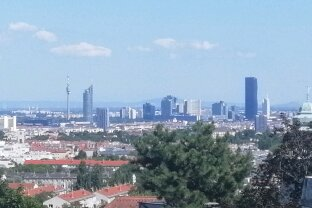 Wohnung mit traumhaften Wienblick auf der nicht einsehbaren Terrasse