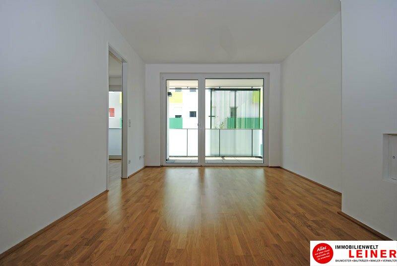 *UNBEFRISTET* Schwechat - 3 Zimmer Mietwohnung im Erstbezug mit großerTerrasse Objekt_8643 Bild_40