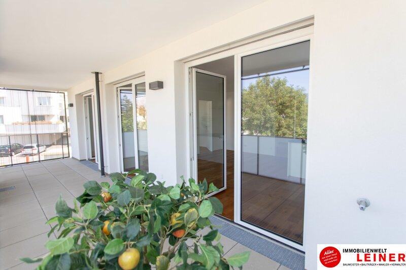 *UNBEFRISTET* 14 m² Terrasse * Schwechat - 2 Zimmer Mietwohnung im Erstbezug mit großer Terrasse Objekt_9162 Bild_860