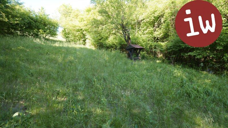 Baugrund Südlage, unverbaubarer Fernblick Objekt_515 Bild_217