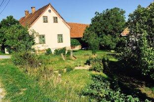Altes Bauernhaus / Großes Grundstück / auch Landwirtschaft möglich