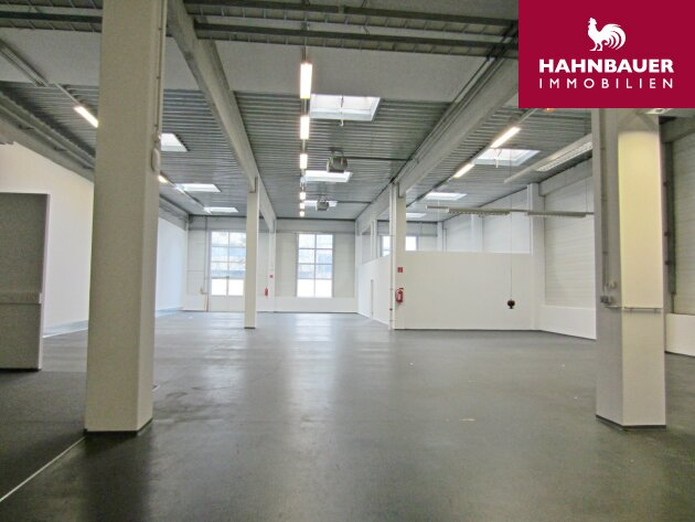 Warehouse 1962 m2 and Office space 226 m2 combination south of Vienna in Wr. Neudorf, Austria to let