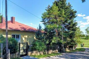 Charmantes Einfamilienhaus in absoluter Grünruhelage direkt an der Grünanlage Löwygrube - sichern Sie sich eine echte Rarität!
