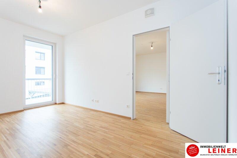 Himberg - 2 Zimmer Mietwohnung mit großartiger Terrasse Objekt_9789 Bild_403