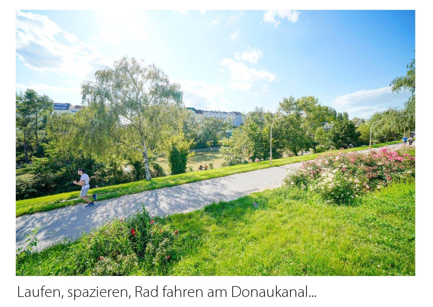 Enjoy Donaukanal
