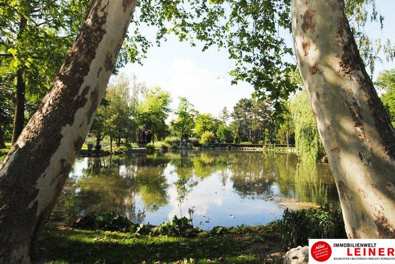 Schwechat – ruhige, sehr nette 2 Zimmer Mietwohnung direkt beim Stadtpark! Objekt_9957 Bild_95