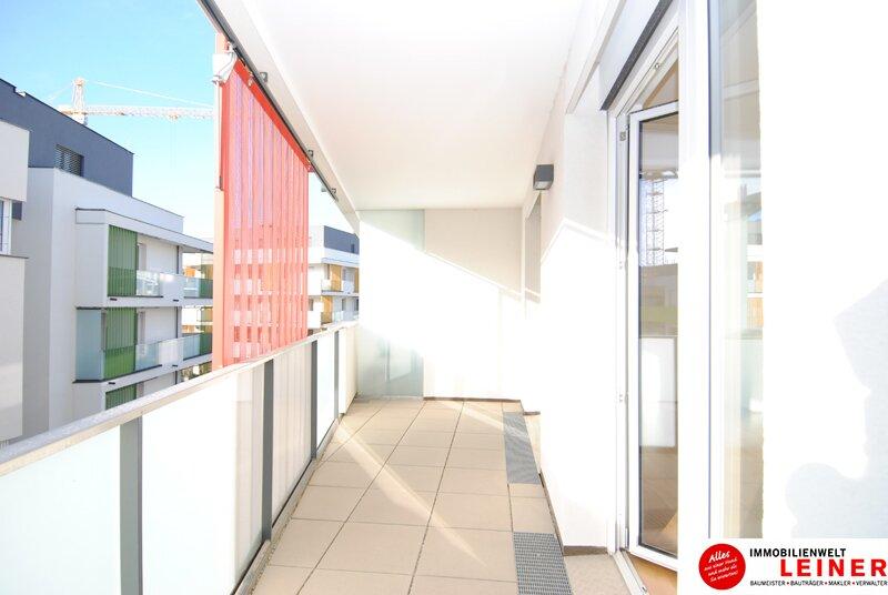 2 Zimmer - Mietwohnung mit Balkon und Loggia inkl. Tiefgaragenplatz in Schwechat Objekt_1624 Bild_27