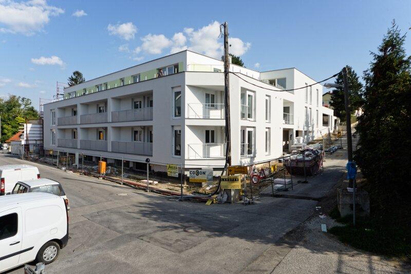 Moderne Neubaumietwohnung mit Terrasse in der Johannesgasse 43 Top 17, Wolkersdorf /  / 2120Wolkersdorf im Weinviertel / Bild 0