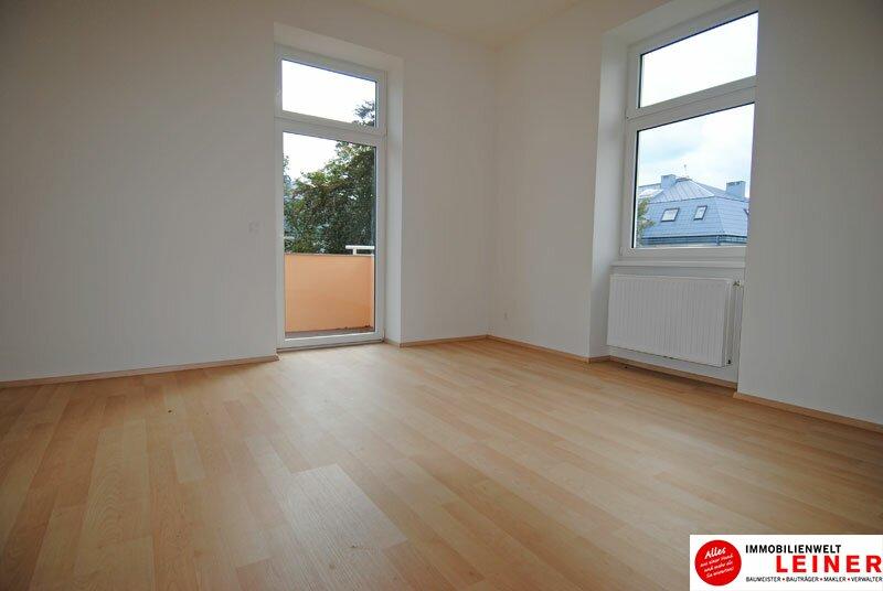 2 Zimmer Mietwohnung mit Balkon -  die besondere Art zu Wohnen in der geschichtsträchtigen Villa Mautner Markhof in Schwechat! Objekt_10016 Bild_614