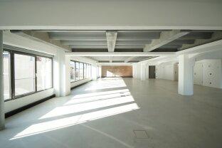 Erstbezug: Neu renoviertes Industrial-Style Loft in der Brotfabrik Wien!