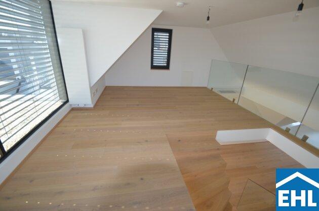 Galerie (3)