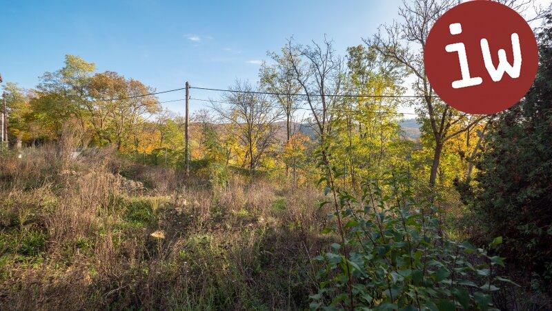 Wunderschönes Grundstück mit Baubewilligung für eine Familienvilla Objekt_650 Bild_71