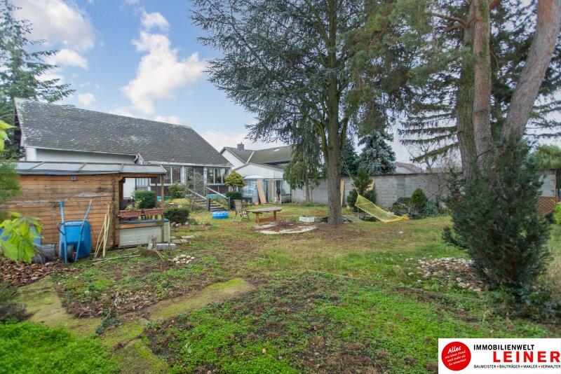 Zweifamilienhaus in Parndorf mit einem Traumgarten und Doppelgarage Objekt_11604 Bild_12