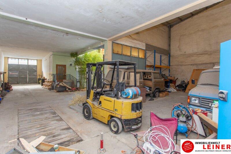 Vereinen Sie Wohnen und Arbeiten an einem Ort: Ihr neues Haus in Hof am Leithaberge Objekt_9962 Bild_169