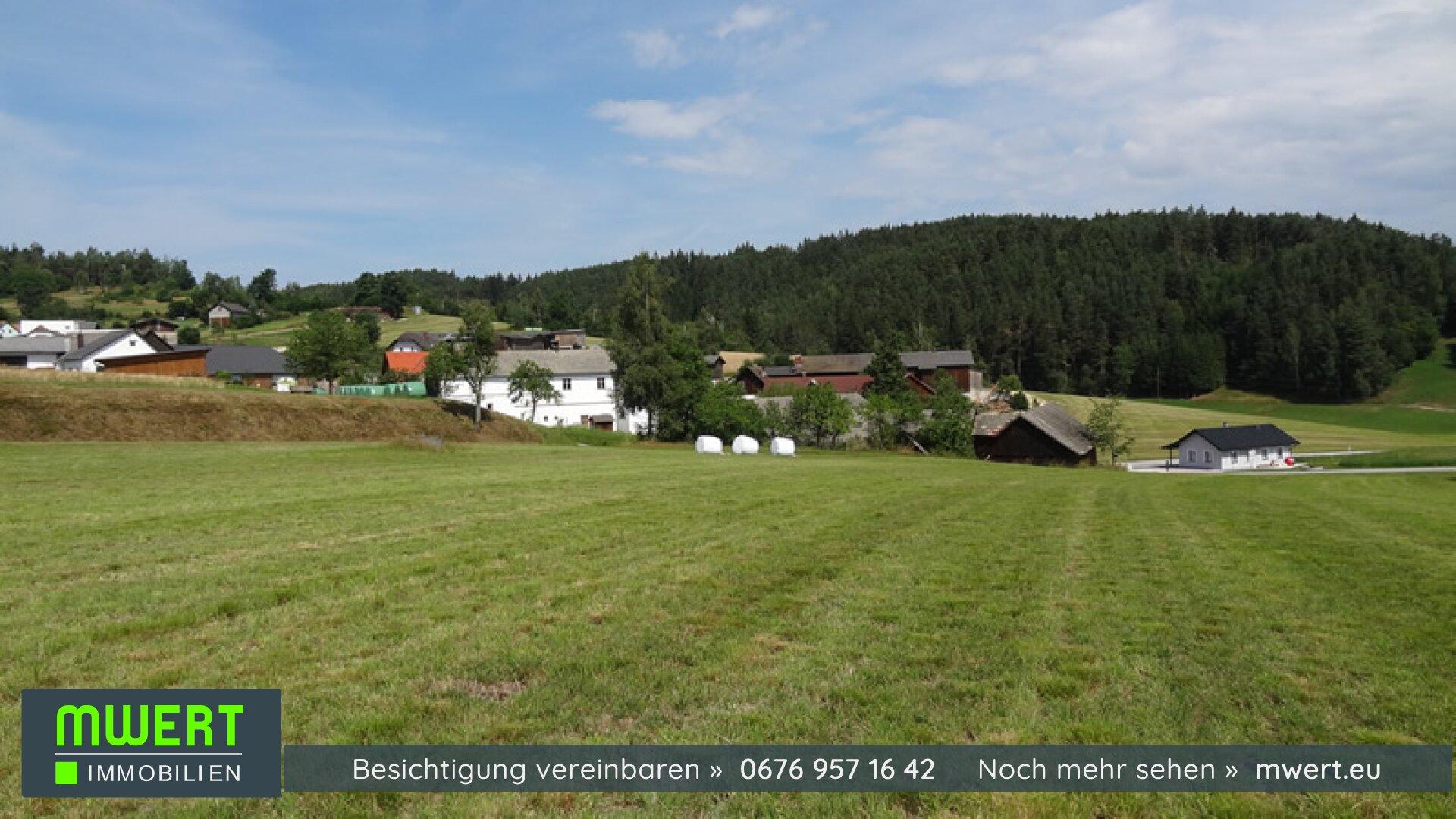 Baugrund im Waldviertel, Rappottenstein