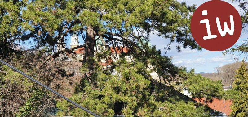 Zentral gelegene charmante Altstadtvilla Objekt_684 Bild_165