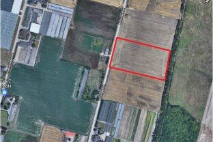 Landwirtschaftsgrund in Essling