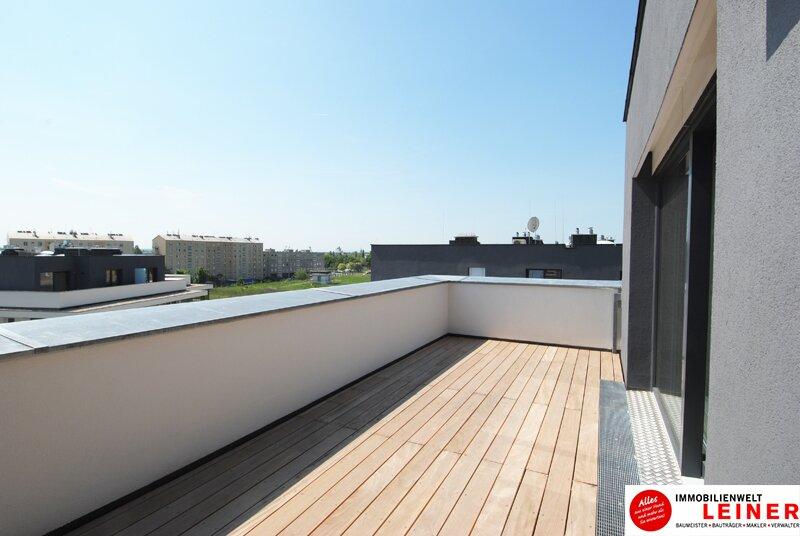 Das extravaganteste Penthouse - an Schwechats erster Adresse. Sofort beziehbar! /  / 2320Schwechat / Bild 8
